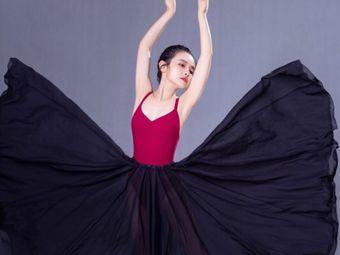 国际JS舞蹈连锁(芗城校区)