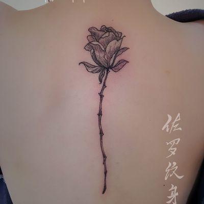 单只玫瑰案纹身图