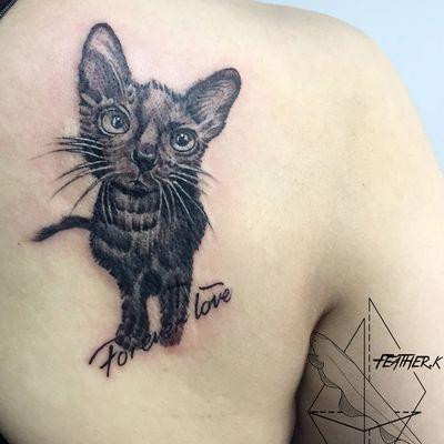 写实宠物猫纹身图
