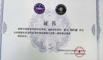 中国整形美容协会损伤救治分会理事会理事